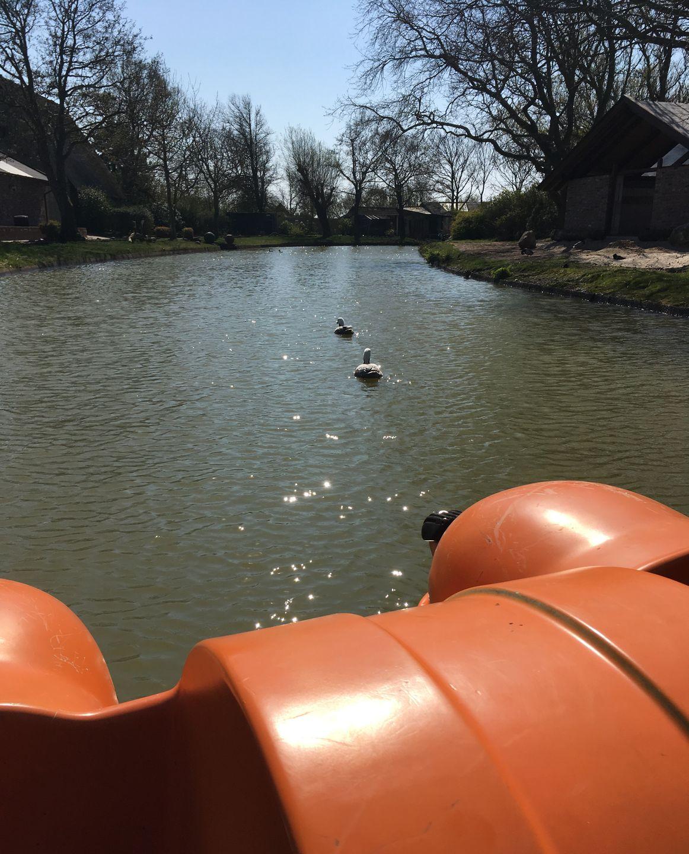 Tretbootfahren im Tierpark Tinnum auf Sylt