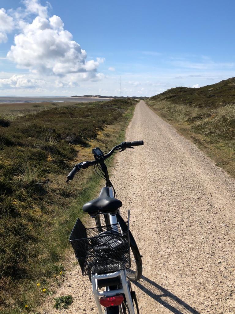 Mit dem Fahrrad über die Insel Sylt